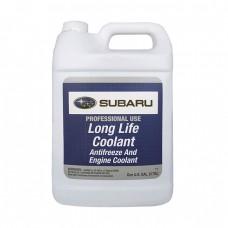 Антифриз концентрированный SUBARU Long Life Coolant (3,780л)